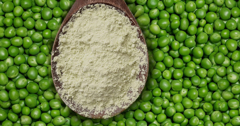 5 ventajas de la proteína en polvo de origen vegetal