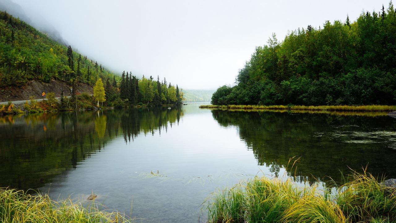¿Por qué WONU WATER disminuye la huella ecológica?